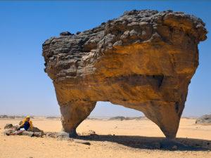 algeria4