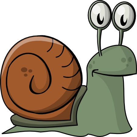A Snail's Mouth Can Contain Over 25,000 Teeth!